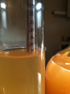 Hydrometer Reading Cider